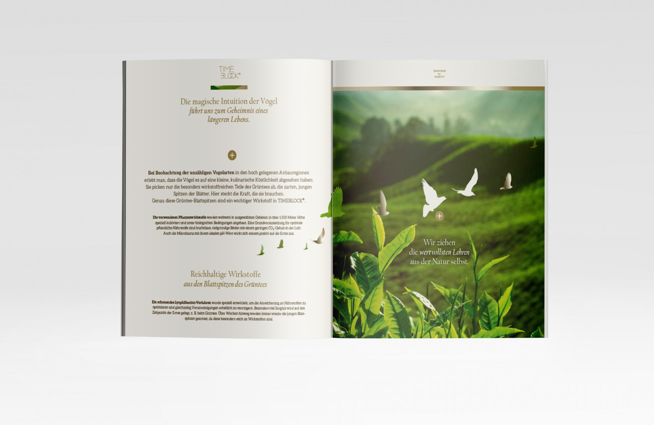 02-Inner-Pages-Imagebrochure_TImeblock_03